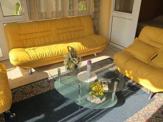 Apartments and Rooms Dragan - 92341-A1 - Sutomore vacation rentals