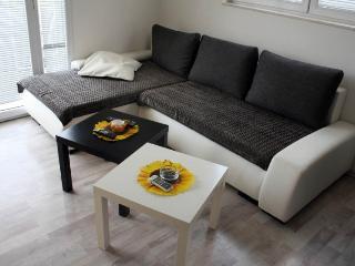 Apartments Milica - 92631-A1 - Sutomore vacation rentals