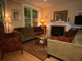 Palisades Townhouse - Stowe Area vacation rentals