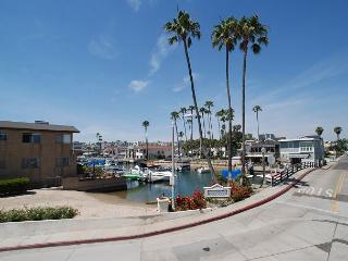 Gorgeous Three Bedroom Canal View (68377) - Orange County vacation rentals