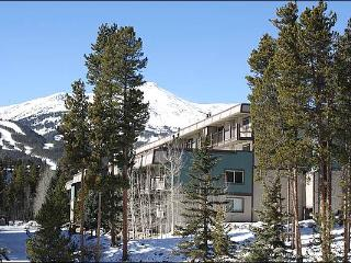 Convenient Location at Affordable Price - Private Setting with Breathtaking Views (13555) - Breckenridge vacation rentals