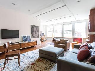 Duane Park Loft - New York City vacation rentals