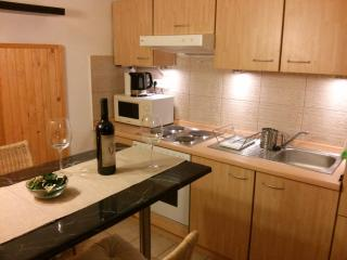 I. district, near Castle and Danube - Budapest vacation rentals