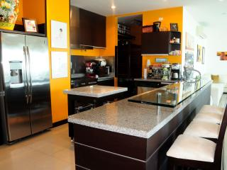 Magnificient Ocean Front Penthouse: - Cartagena vacation rentals