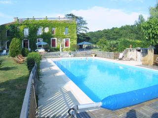 Chateau le Poiron - Fontenay-le-Comte vacation rentals