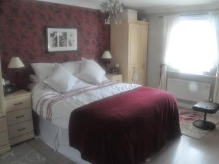 Large detached house with woodland View, Cardiff - Barry vacation rentals