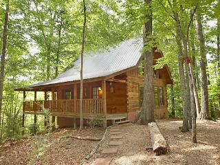 Flying Squirrel - Tennessee vacation rentals