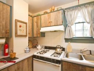 1028: Laura's Cottage - Savannah vacation rentals
