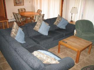TR121 Timeshare Condo w/Wifi, Clubhouse, Mountain Views, Fireplace - Silverthorne vacation rentals