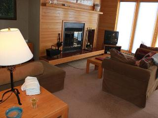 TR414 Timeshare Condo w/Wifi, Clubhouse, Mountain Views, Fireplace - Silverthorne vacation rentals