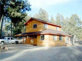 Big Horn Cabin - Image 1 - Pagosa Springs - rentals