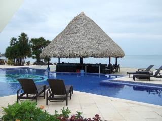 Pool Bar - Belize Ocean Club 2BR Suite - Ocean Front Poolside - Placencia - rentals