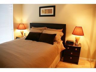 1BR-Yaletown: Solarium,Deck, pool,sauna,Jacuzzi 4 - Vancouver vacation rentals