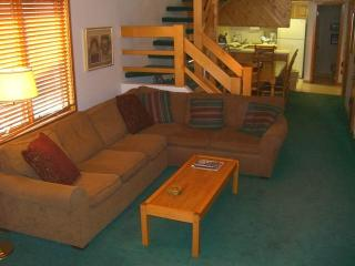 Eagle's Nest #24-2 - Almont vacation rentals