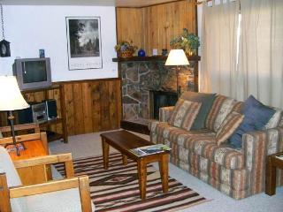 Three Seasons #137 - Crested Butte vacation rentals