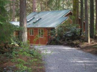 Herons' Roost, Cozy Cabin on five wooded acres - Langley vacation rentals