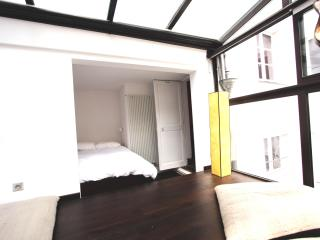 Elegant,cosy,rue de Seine apartment - Paris vacation rentals
