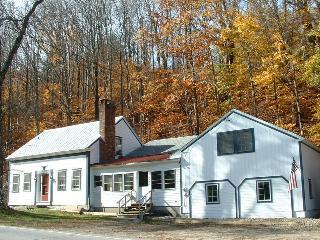 Spotless Mount Snow Stratton Vacation Home - West Wardsboro vacation rentals