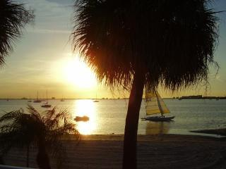 Florida Vacation Getaway - Saint Petersburg vacation rentals