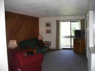 Living room - Sun Valley Cottages, Condo #225 - Weirs Beach, NH - Laconia - rentals