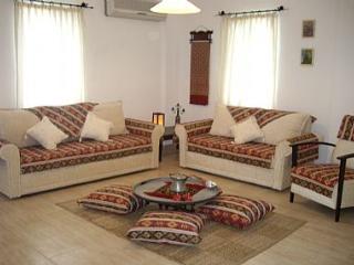 DALYAN VILLA MAVI - WIFI FREE - Mugla Province vacation rentals