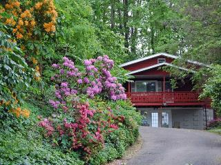 Luxury chalet 3 min. to downtown Asheville - Asheville vacation rentals