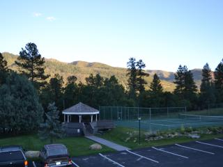 Pine Acres - Durango vacation rentals