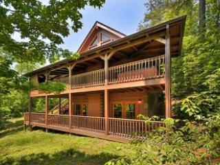 Country Lodge - Image 1 - Gatlinburg - rentals