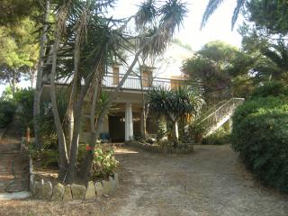 Villa Enza in Castellammare del Golfo, west Sicily - Castellammare del Golfo vacation rentals