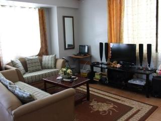 Fully furnished condo in Davao city near SM Mall - Davao vacation rentals