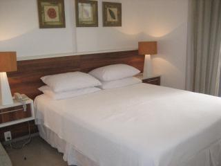 Condo Prudente 205 - Ipanema vacation rentals