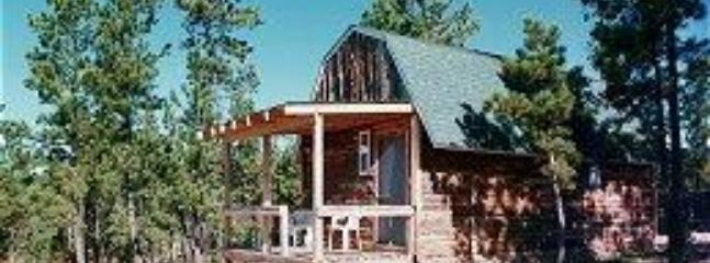 Cabin - Double D Bed and Breakfast Cabins - Custer - rentals
