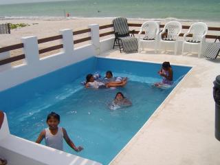 Casa Magica, Beachfront, Pool, High Speed internet - Chuburna vacation rentals