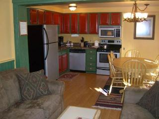 Three Seasons #201-A - Crested Butte vacation rentals
