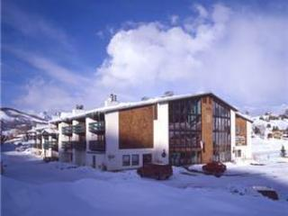 Three Seasons #233-A - Crested Butte vacation rentals