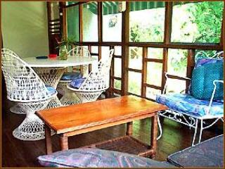 New, Spacious, 2 Bedroom Nirvana on the Beach - Negril vacation rentals