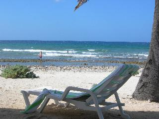 Cottage on Moon Lane, perched up high, great view - Cayman Brac vacation rentals