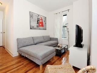 Cozy 2 BR on Lower East Side - New York City vacation rentals