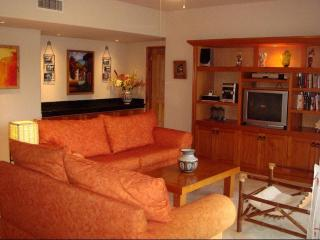 Villa del Mar Beachfront-SPRING BREAK AVAILABILITY - Puerto Aventuras vacation rentals