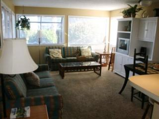Awesome Condo - Half Block to the Beach - Arcadian Shores vacation rentals