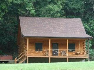 Eagle's Nest - Cabins vacation rentals