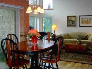 Chairlift - Snowmass vacation rentals