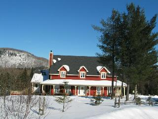 Mont Tremblant - 5 Bedroom spacious country home - Mont Tremblant vacation rentals