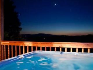Bear Necessity - Blue Ridge vacation rentals
