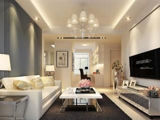 A luxury codon right next to Pudong century park - Shanghai vacation rentals
