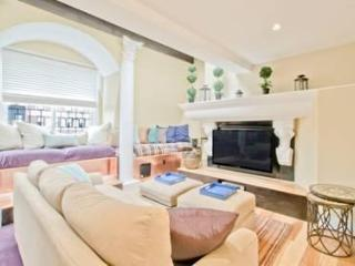 New Three Bedroom Two Bath Bi-Level Back Bay - Boston vacation rentals