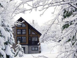 Higuma - Niseko - Niseko-cho vacation rentals