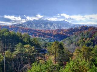 Leconte Homestead - Image 1 - Gatlinburg - rentals
