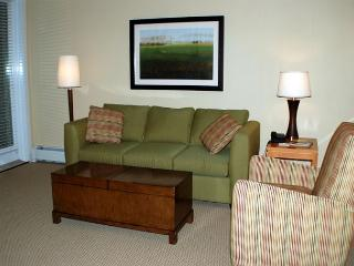 Cozy and comfortable 1 bedroom ski in ski out condo with a full kitchen!!! - Winter Park vacation rentals
