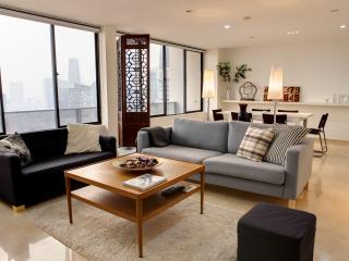 The Cathay Theme - 3 Bedroom Apartment - Singapore vacation rentals